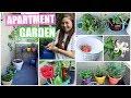 My Garden Tour! Apartment Balcony Garden 🌿🍋🍓
