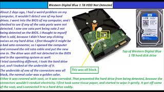 Western Digital Blue 1 TB Hard Drive Not Detecting Problem