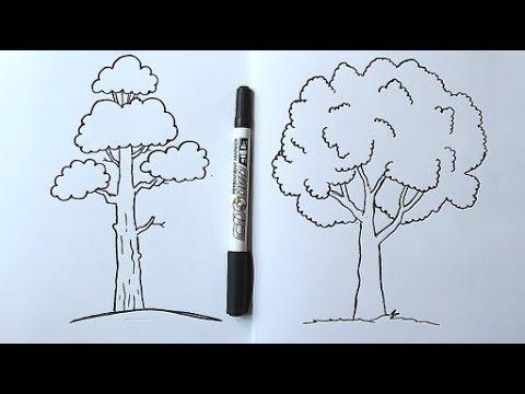 Нарисовать дерево желаний своими руками