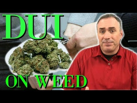 002: Motion to Suppress on WEED Based DUI Arrest. By: Orlando Criminal Defense Attorney Jeff Lotter