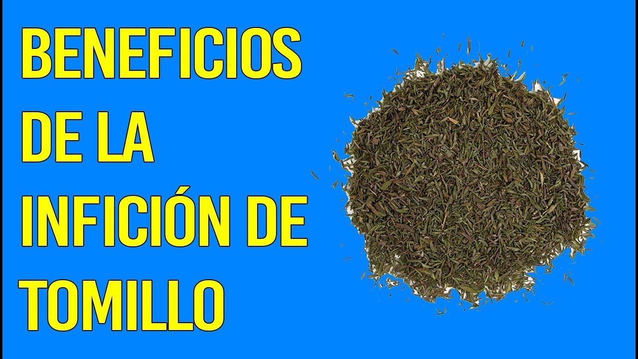 Tomillo: propiedades, beneficios y valor nutricional de esta planta medicinal