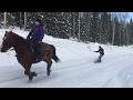 Bonjourning: Snowboarding behind a Horse