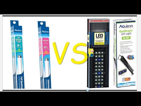 Aquarium Light COMPARISON , Marineland, Aqueon, Fluorescent & LED