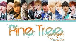 Wanna One (워너원) - 'PINE TREE' (소나무) (Lyrics [Color Coded_Han_Rom_Eng]