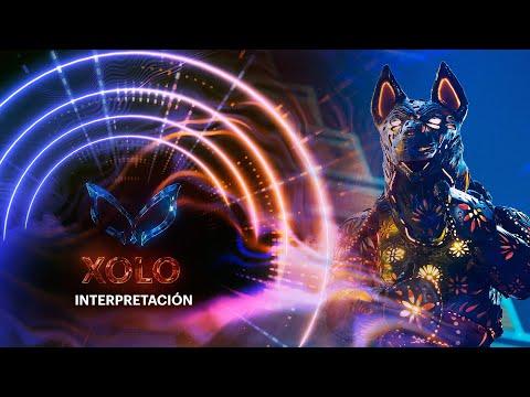 #XoloEs ¡Itatí Cantoral se quiere ir con Xolo! | ¿Quién es la Máscara? 2020