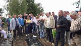 Sadzenie truskawek praktyczne wskazowki