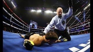 Teofimo Lopez vs Mason Menard Vicious TKO Highlights.