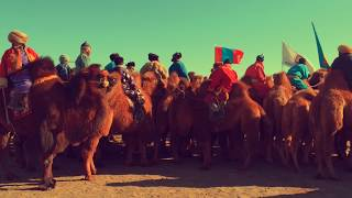 Thousand Camel Festival - Gobi Desert, Mongolia | Faraz Shibli