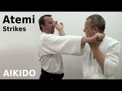 Aikido - ATEMI - striking techniques, by Stefan Stenudd