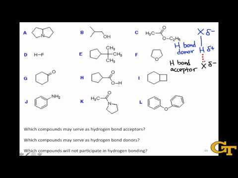Identifying Hydrogen Bond Donors & Acceptors