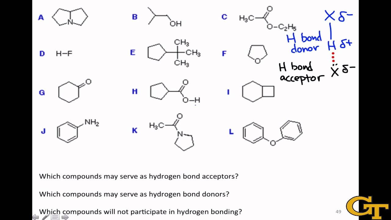Identifying Hydrogen Bond Donors & Acceptors - YouTube