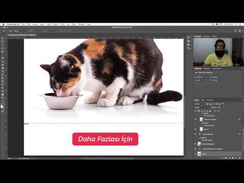 Photoshop Dersleri - HTML Tabanlı Mailing Oluşturma
