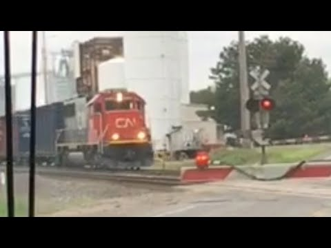 Short CN Freight Train in Vicksburg, Michigan