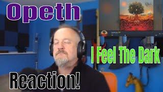 Opeth - I Feel The Dark (Reaction)