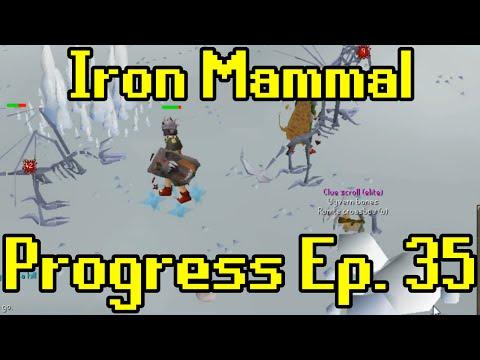 Oldschool Runescape - 2007 Iron Man Progress Ep. 35 | Iron Mammal