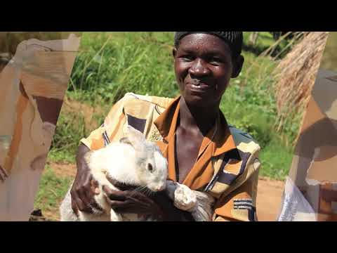 SAVED BY RABBIT REAL FINAL-MINI DOCUMENTARY_SDG 1