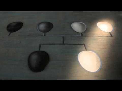 ЕВГЕНИКА. ИСКУССТВЕННЫЙ ОТБОР / EUGENIC MINDS (trailer)