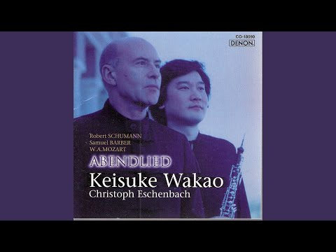 Sonata in B-Flat Major, Kv454: I - Largo - Allegro