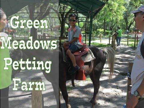 Green Meadows Petting Farm, Orlando, Florida 2016 (View in HD)