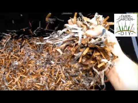 How To Worm Composting Vermicomposting Quick Guide And Facts