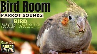 Bird Room Buddies | Keep Your Parrot Happy | HD Parrot TV for Birds | 24/7 Bird Room TV