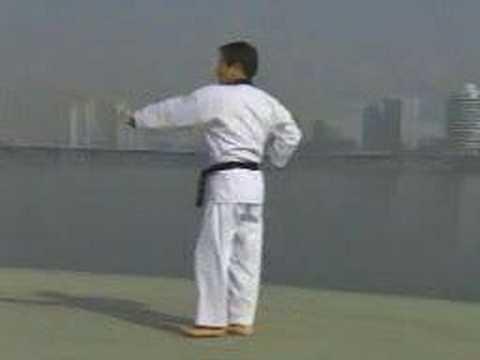 1. Taekwondo Poomsae Taegeuk Il Jang (WTF)