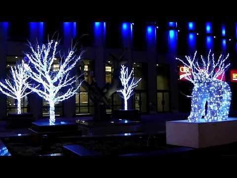 Downtown Winnipeg   14   Night and almost Christmas time   Nov 2014