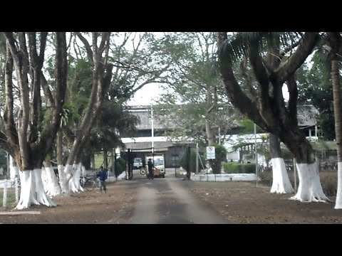 Asia's largest tea factory is in Assam(INDIA) - BEESAKOPIE FACTORY