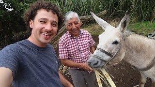 Este hombre se hizo millonario trabajando con su burro | Galápagos 🏝