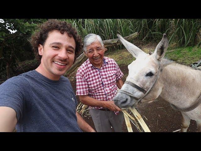 Guatemala. Youtube тренды — посмотреть и скачать лучшие ролики Youtube в Guatemala.