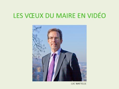 Voeux 2016 de M. Luc Wattelle