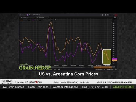 Why Corn Prices May Be Nearing a Floor