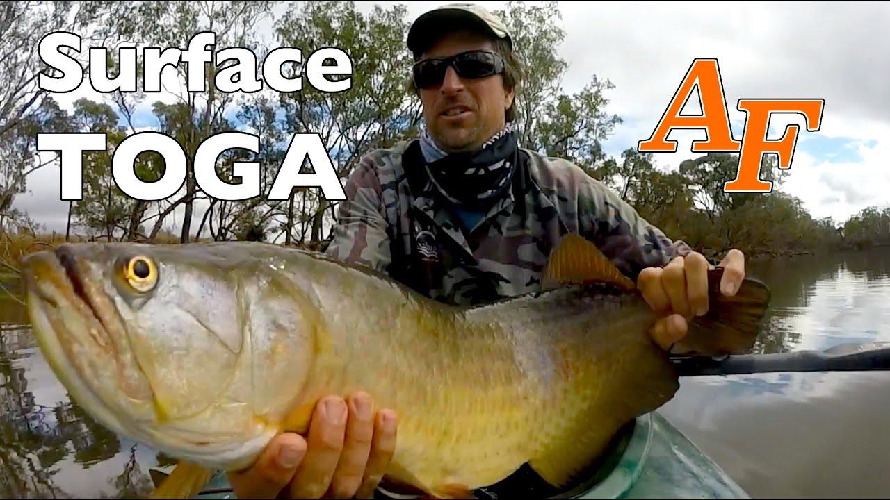 Kayak fishing arowana topwater saratoga andysfishing andy for Youtube fishing video