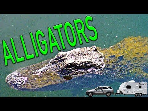Everglades National Park and Big Cypress National Preserve.