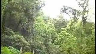 Refugio del Quetzal, San Rafael Pie de La Cuesta, San Marcos