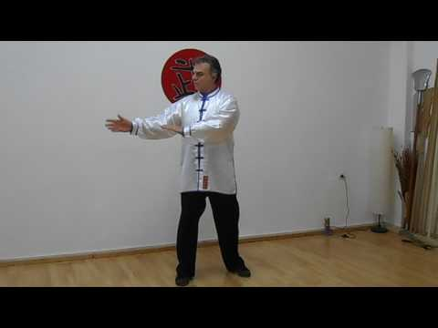 Tai Chi Chuan for Inner Balance by Master Bill Drougas