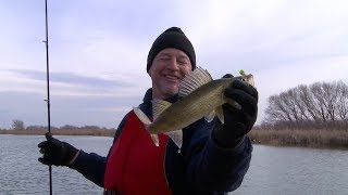 jigging-wolf-river-walleyes-early-spring-fishing-tips