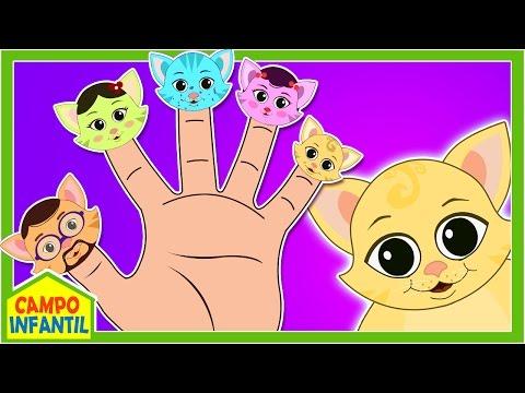 Familia Dedo de Gatitos - Cat Finger Family in Spanish - y más Canciones Infantiles | Campo Infantil