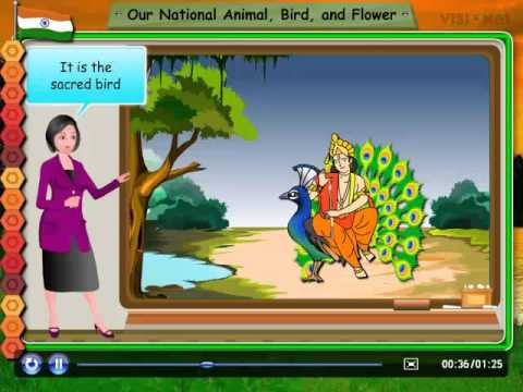 Our National Animal, Bird and Flower