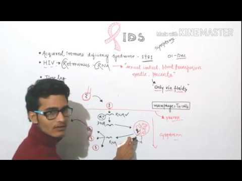 AIDS - Basics and replication of retrovirus.