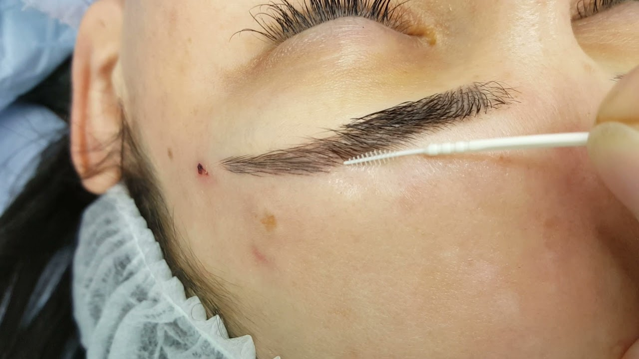 Healed Microblading Density Restoration from 1st visit by El Truchan @ Perfect Definition