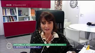 """L'immunologa antonella viola sull'annuncio del commissario arcuri sul vaccino contro il covid: """"a gennaio solo per operatori sanitari, i cittadini dalla ..."""