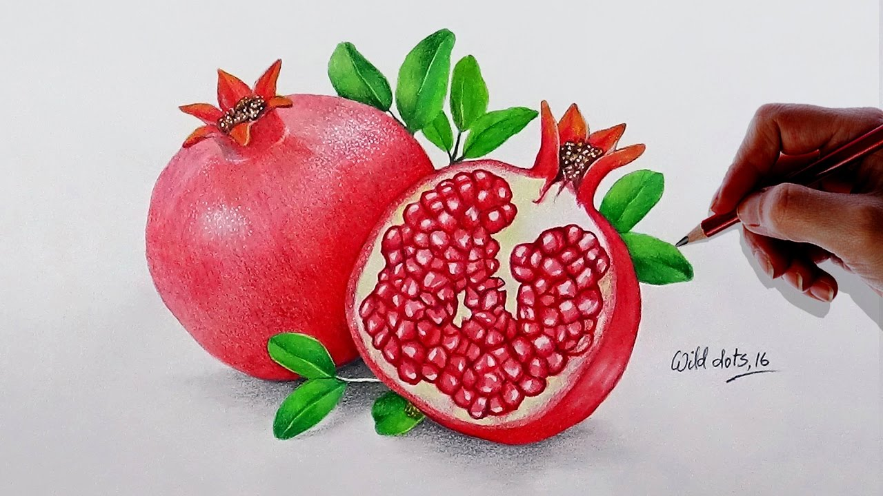 How To Draw A Pomegranate - Easy And Simple Steps | - YouTube