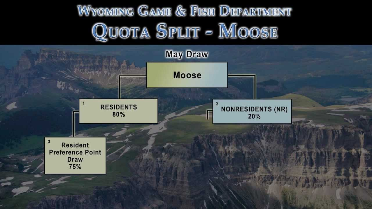 Wyoming moose license draw youtube for Wyoming non resident fishing license