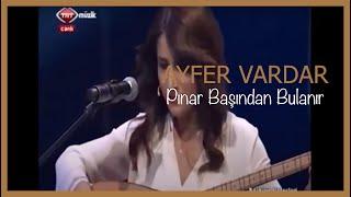 Ayfer Vardar - pınar başından bulanır