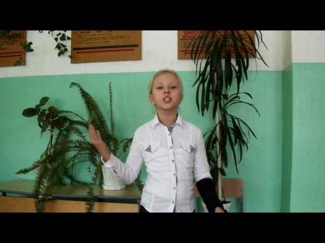 Изображение предпросмотра прочтения – ДарьяКосарева читает отрывок изпроизведения «Бородино» М.Ю.Лермонтова
