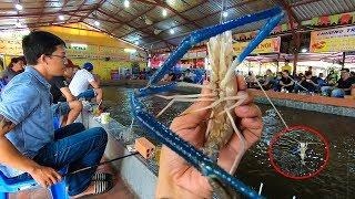 Câu Tôm càng xanh Khổng lồ, thú vui giải trí độc nhất vô nhị của người Sài Gòn