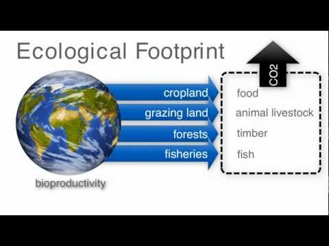 Population - Video2- The Ecological Footprint