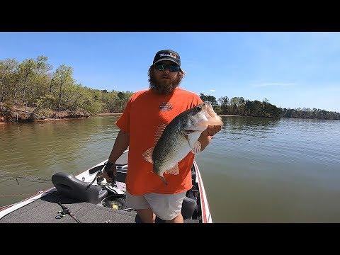 Lake Sinclair Bass Fishing | Practice 03/29/19