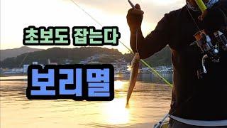 [ 서민낚시 150회 ] 낚시 초보도 잡을수 있는 고기. 보리멸